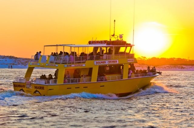 Dolphin cruise in the Destin Harbor at sunset