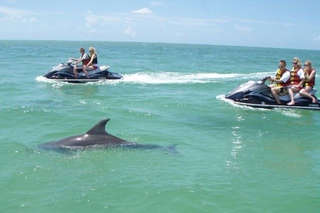 Dolphin sighting on a Destin waverunner dolphin tour