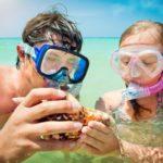 massive shell found while snorkeling in Destin