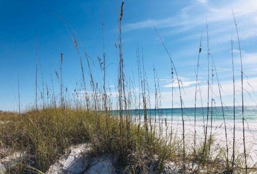 Henderson Beach in Destin, FL