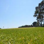 executive golf course at Golf Garden in Destin, FL