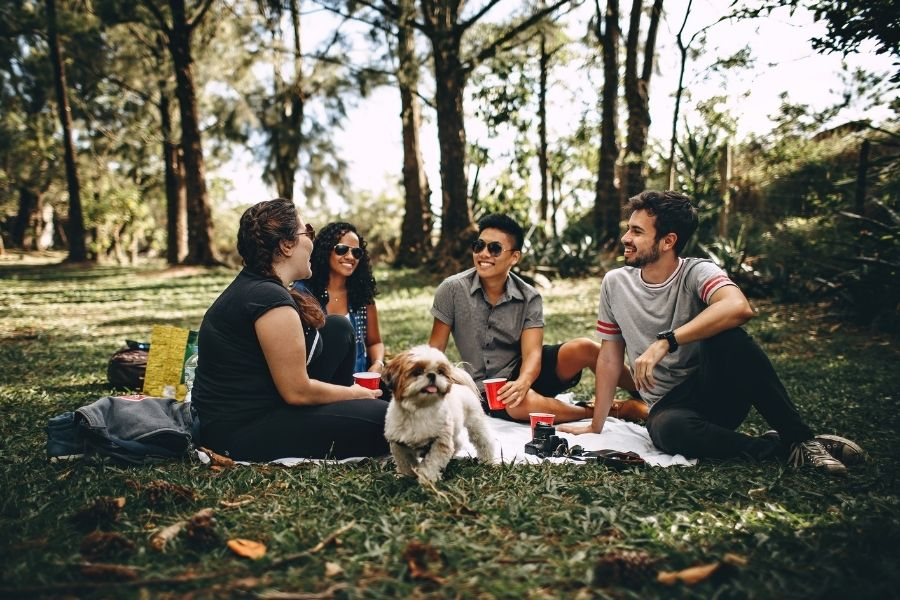 picnic at the park in Destin, FL